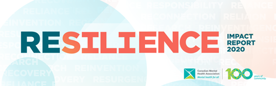 Resilience Impact Report Web page banner